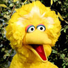 Obama Loves Big Bird and Nickelodeon, Gives Viewers Debt-Ridden Future